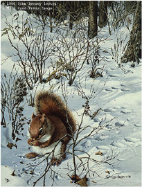 """John Seerey – Lester Limited Edition Print:""""Snowy Excursion - Red Squirrel"""""""