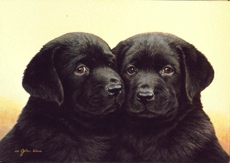 """John Weiss Limited Edition Print:""""Double Trouble"""""""
