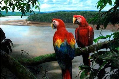 """Kevin Daniel Hand Signed and Numbered Limited Edition Giclee: """"Jewels of The Tropics"""""""