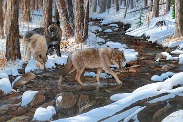"""Kevin Daniel Hand Signed and Numbered Limited Edition Giclee: """"Winters Crossing """""""