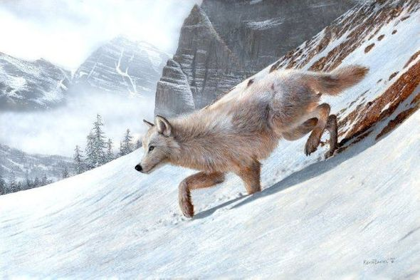 "Kevin Daniel Hand Signed and Numbered Limited Edition Giclee: ""Wolf Ridge"""