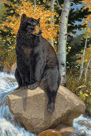 """Lee Kromschroeder Hand Signed and Numbered Limited Edition Print: """"Paws That Refreshes-Black Bear (Paper)"""""""