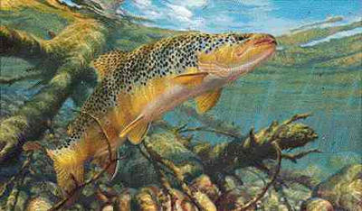 """Mark Susinno Handsigned and Numbered Limited Edition AP Print: """"Matching the Hatch-Brown Trout"""""""