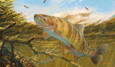 """Mark Susinno Handsigned and Numbered Limited Edition Artist Proof Print: """"Cutthroat Trout"""""""