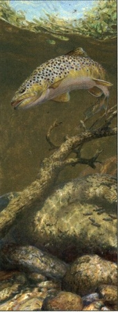 """Mark Susinno Handsigned & Numbered Limited Edition Print:""""The Refusal - Brown Trout"""""""