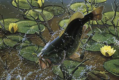 """Mark Susinno Limited Edition Print:""""Airborne-Large Mouth Bass"""""""
