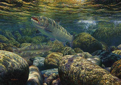 "Mark Susinno Limited Edition Print:""On The Run-Atlantic Salmon"""