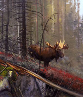 """Michael Coleman Handsigned & Numbered Giclee Limited Edition Print:""""In The Timber-Bull Moose"""""""