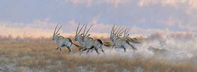 """Michael Sieve  Hand Signed and Numbered Limited Edition Canvas Giclee:""""Teamwork-Gemsbok """""""