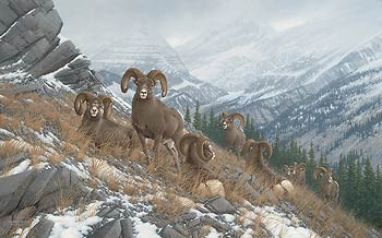 "Michael Sieve Hand Signed and Numbered Limited Edition Giclee on Canvas Edition: ""Glacier Kings Bighorn Sheep"""