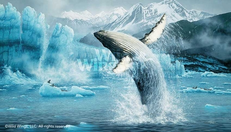 "Michael Sieve Hand Signed and Numbered Limited Edition Print: ""White Thunder-Humpbacks"""