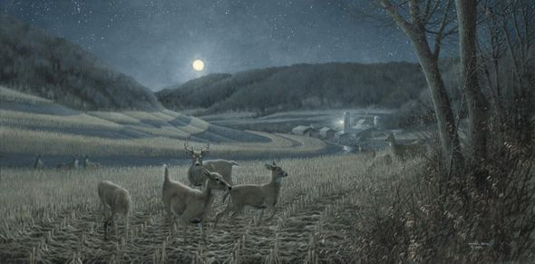 "Michael Sieve Hand Signed & Number Limited Edition Print:""Night Moves-Whitetail Deer"""