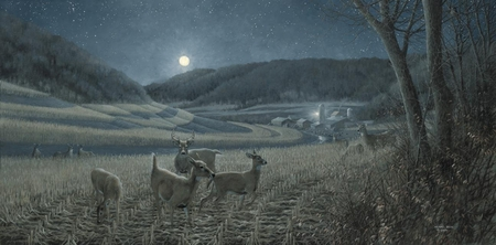 """Michael Sieve Hand Signed & Number Limited Edition Print:""""Night Moves-Whitetail Deer"""""""