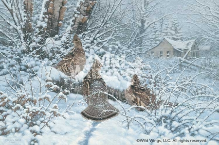 """Michael Sieve Handsigned and Numbered Limited Edition Print: """"Hunkered Down - Ruffed Grouse Print"""""""