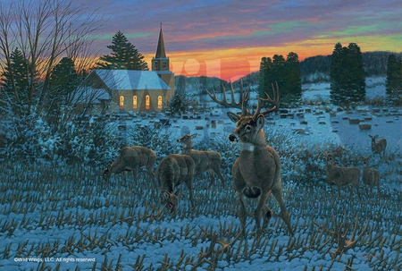 """Michael Sieve Handsigned and Numbered Limited Edition:""""The Stone Church Buck"""""""