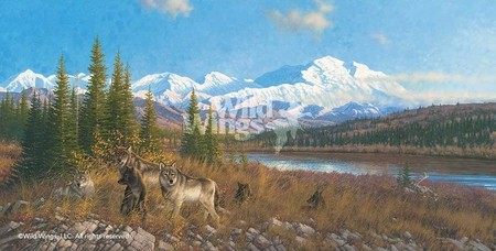 "Michael Sieve Handsigned and Numbered Limited Edition: ""Denali Six Pack – Wolves"""