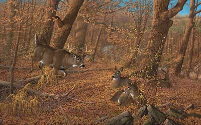 """Michael Sieve Handsigned and Numbered Limited Edition:""""Ten O'Clock Rounds - Whitetail Deer"""""""