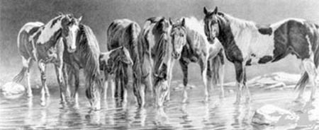 """Nancy Davidson Artist Hand Signed Open Edition Print: """"The Watering Hole """""""