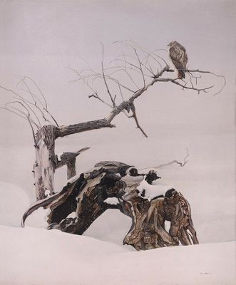 "Robert Bateman Artist Signed Limited Edition Canvas Giclee:""Red-Tailed Hawk in Winter"""