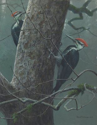 "Robert Bateman Artist Signed Limited Edition Canvas Giclee:""Our Orchard - Pileated Woodpeckers"""