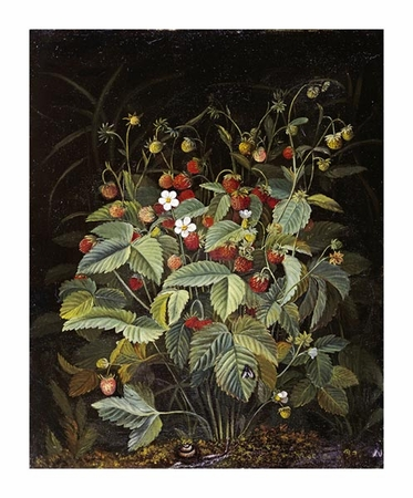 "Otto Diderich Ottesen Fine Art Open Edition Giclée:""Wild Strawberries"""