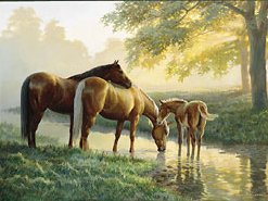 """Persis C. Weirs Limited Edition Print:""""Spring Morning-Horses"""""""