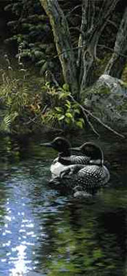 """Persis Clayton Weirs Open Edition Print: """"Dancing Water Loons"""""""