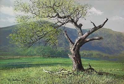 "Peter Ellenshaw Handsigned & Numbered Limited Edition Giclee on Canvas:""Lone Oak"""