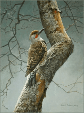 """Robert Bateman Hand Signed and Numbered Limited Edition Canvas Giclee:""""Flicker on Apple Tree"""""""
