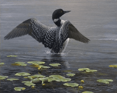"""Robert Bateman Hand Signed and Numbered Limited Edition Canvas Giclee:""""Lake Loon and Lily Pad"""""""