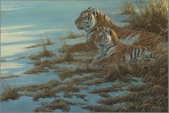 """Robert Bateman Hand Signed and Numbered Limited Edition Canvas Giclee:""""Siberian Clearing - Mother and Cub"""""""