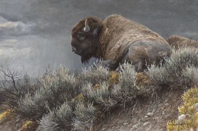 "Robert Bateman Hand Signed and Numbered Limited Edition Canvas Giclee:""Weather Watch"""