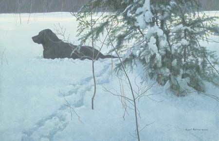 """Robert Bateman Hand Signed and Numbered Limited Edition Giclee Canvas: """"Off the Leash"""""""