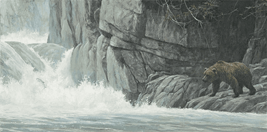 """Robert Bateman Hand Signed And Numbered Limited Edition Print and Canvas Giclee :""""Fishing Hole (Grizzly)"""""""
