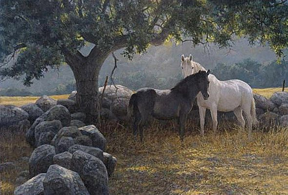 "Robert Bateman Hand Signed And Numbered Limited Edition Print and Canvas Giclee :""In the Field - Mare and Foal"""