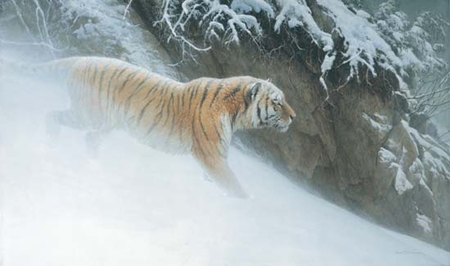 """Robert Bateman Hand Signed and Numbered Limited Edition Print on Paper:""""Momentum - Siberian Tiger"""""""