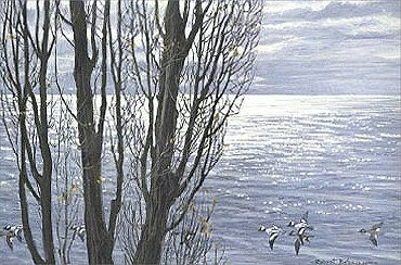 """Robert Bateman Hand Signed And Numbered Limited Edition Print:""""Poplar Tree and Buffleheads """""""