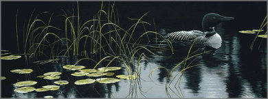 """Robert Bateman Hand Signed And Numbered Limited Edition Renaissance Collection Canvas Giclee:"""" Lily Pads and Loon """""""