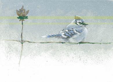 "Robert Bateman Hand Signed and Numbered Limted Edition Print:""Winter Blue - Blue Jay - SOLD OUT """