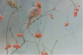 "Robert Bateman Handsigned and Numbered Limited Edition Canvas Giclee:""Highbush Cranberries – Cardinal"""