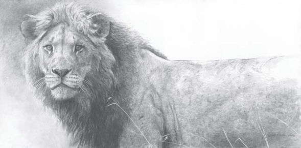 """Robert Bateman Handsigned and Numbered Limited Edition Canvas Giclee:""""The Warrior"""""""
