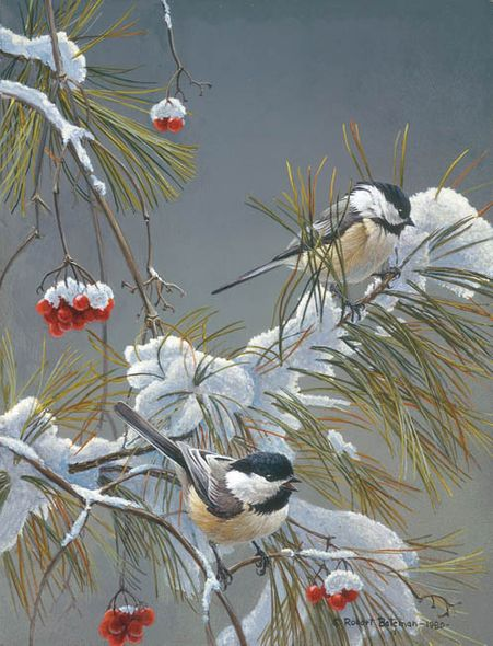 """Robert Bateman Handsigned and Numbered Limited Edition ClasArt Giclee on Board:""""WINTER SONG - CHICKADEES """""""