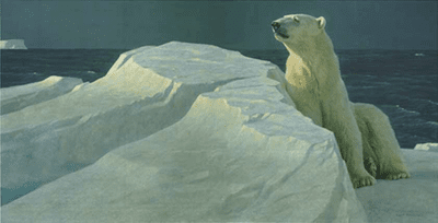 """Robert Bateman Handsigned and Numbered Limited Edition Giclee on Canvas:""""Long Light-Polar Bear"""""""