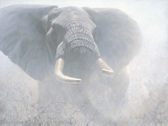 "Robert Bateman Handsigned and Numbered Limited Edition Giclee on Canvas:""Tembo"""