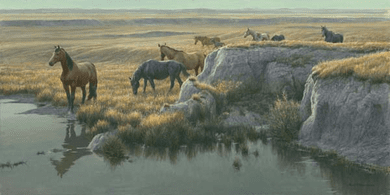 """Robert Bateman Handsigned and Numbered Limited Edition:""""Mustang Country"""""""