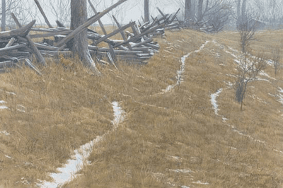 """Robert Bateman Handsigned and Numbered Limited Edition:""""Pasture Trails - Red Fox """""""