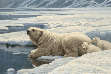 "Robert Bateman Handsigned and Numbered Limited Edition Renaissance Giclee on Canvas: ""Arctic Family"""
