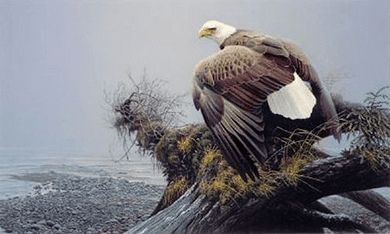 """Robert Bateman Handsigned and Numbered Limited Edition Renaissance Giclee on Canvas:""""Vantage Point"""""""