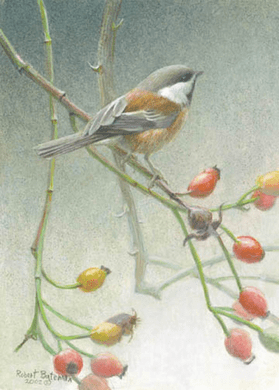 """Robert Bateman Handsigned and Numbered Limted Edition Print:""""Chickadee and Rose Hips"""""""