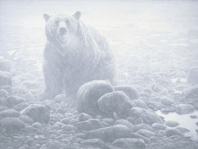 """Robert Bateman Handsigned & Numbered Limited Edition Canvas Giclee:""""End of Season Grizzly"""""""